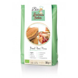 BREAD&PIZZA BIO MIX-250G